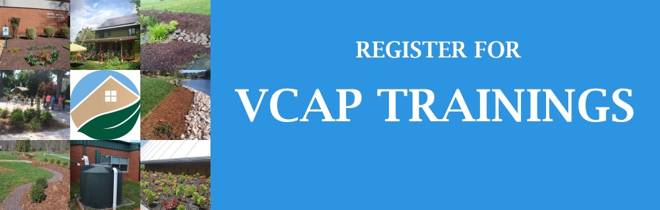 vcap training2